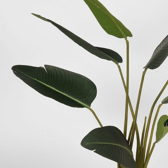 LABEL51- Kunstplant_Strelitzia_70x70x100_cm_Detail