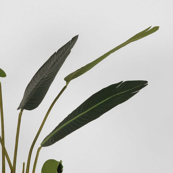 LABEL51- Kunstplant_Strelitzia_70x70x100_cm_Detail_2