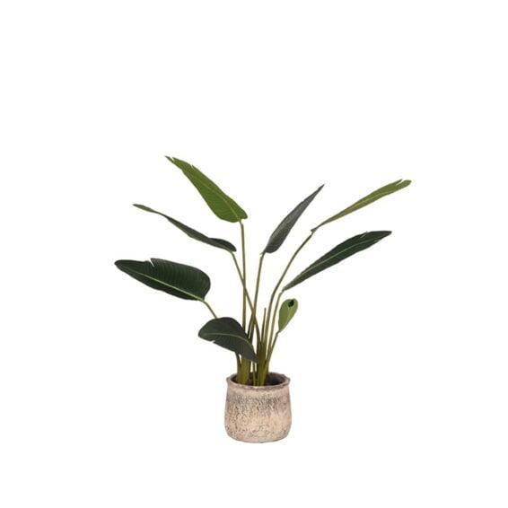 LABEL51- Kunstplant_Strelitzia_70x70x100_cm_Vooraanzicht_Pot